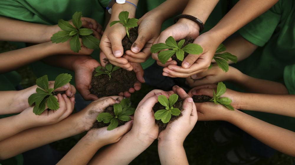 क्यों शिक्षा के सभी स्तरों पर पर्यावरण अध्ययन महत्वपूर्ण है