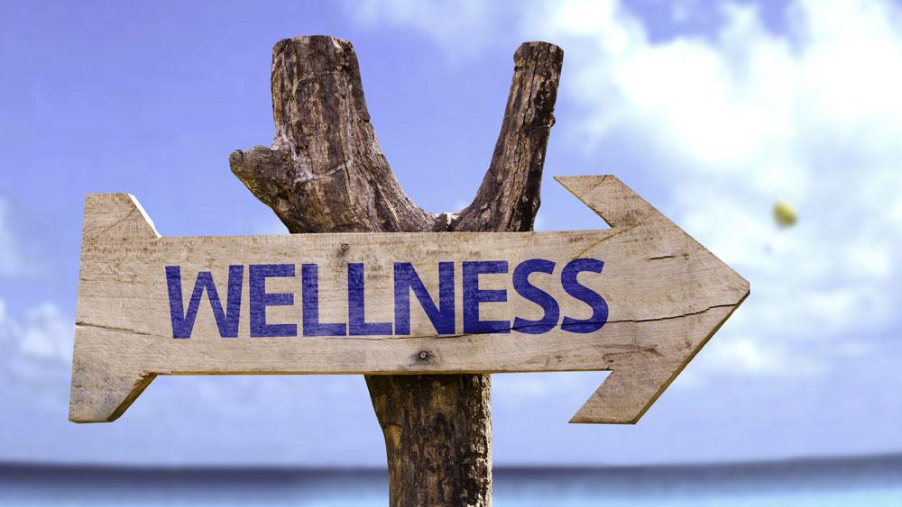 Institutionalising wellness program as part of the curriculum