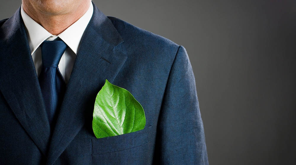 Eco-friendly Business Ideas for Startups