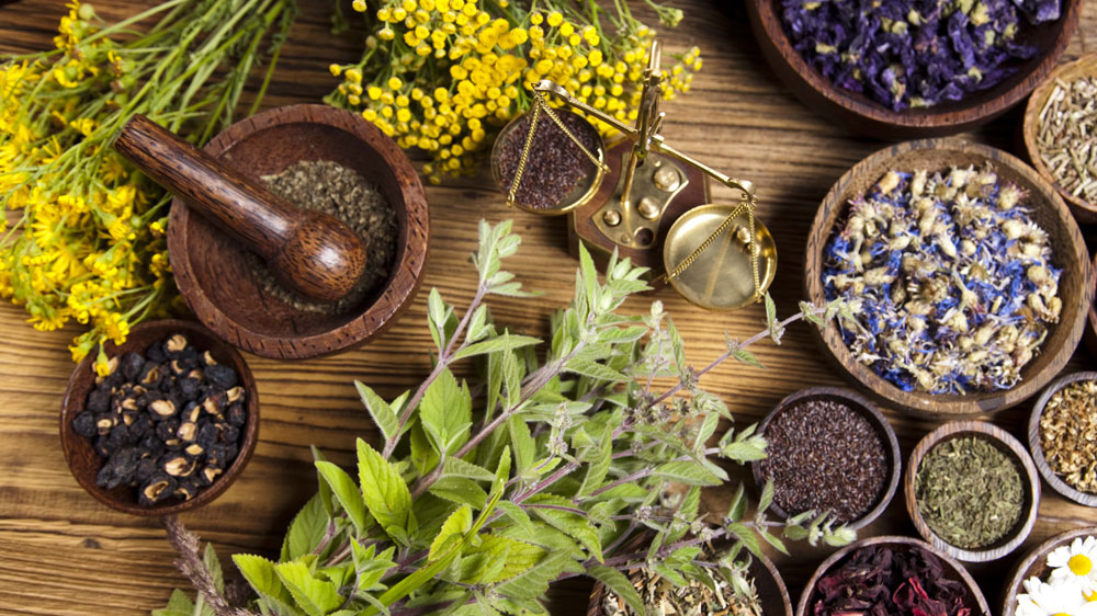 3 ways to start an ayurveda business in India