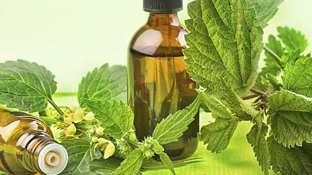 Business Tips for Growth of Herbal Cosmetic Brands