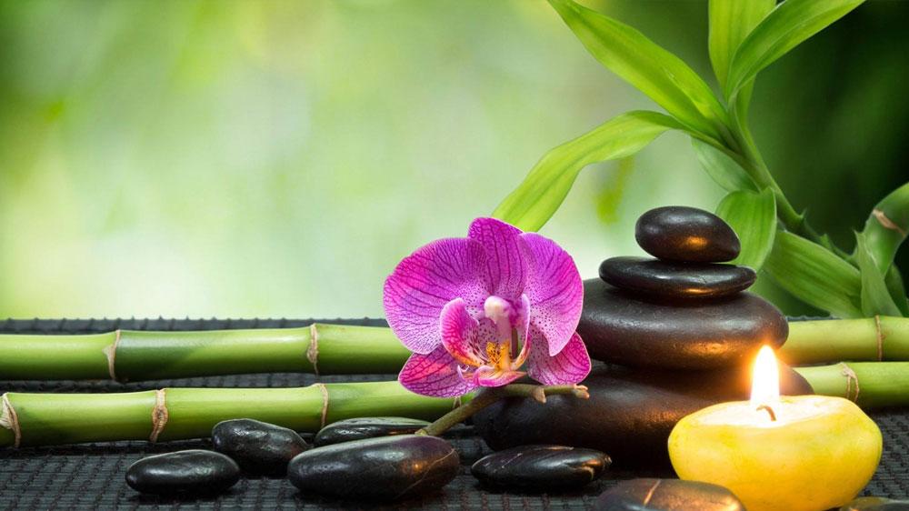 Current market scenario of rapidly booming wellness Industry
