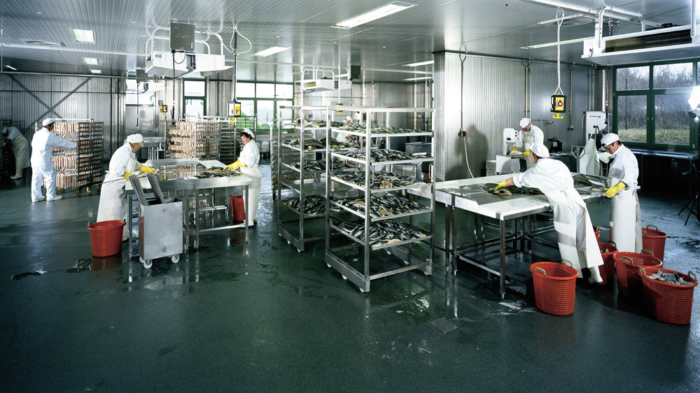 Japanese food processing major to set up unit at Siddipet in Telangana