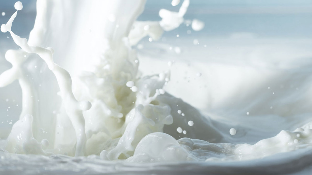 ​Parag Milk, KMG Milk shares up 4% as gvt bans milk products from China