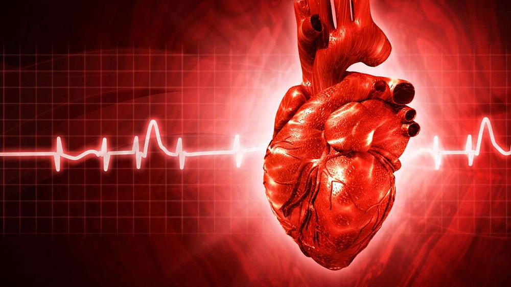 SRL Analysis Shows That Women All Over India Equally At Risk Of Heart Disease