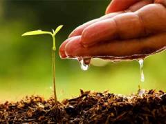 Agri start-ups face policy roadblocks, shortage of funds