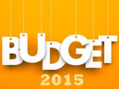 Will Budget 2015 be a game changer for startups?