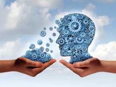 Using 'Training Need Analysis' to decode organisational DNA
