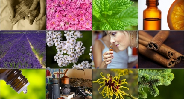 an overview of the nature of aromatherapy a holistic treatment