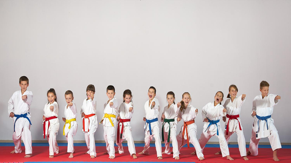 Consider These Points Before Establishing A Martial Art School Business