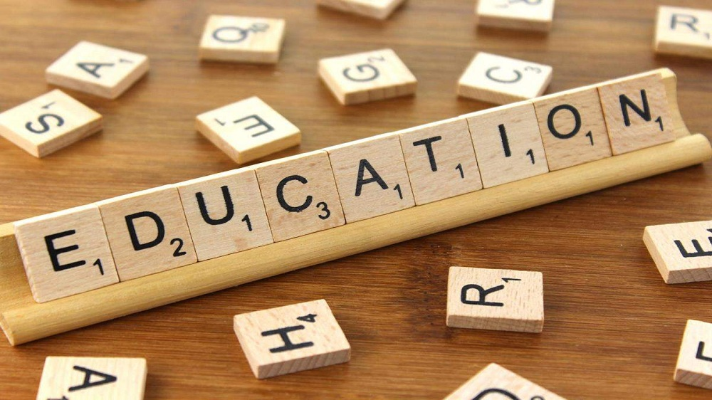 Check Out these Creative Business Ideas in Education Sector