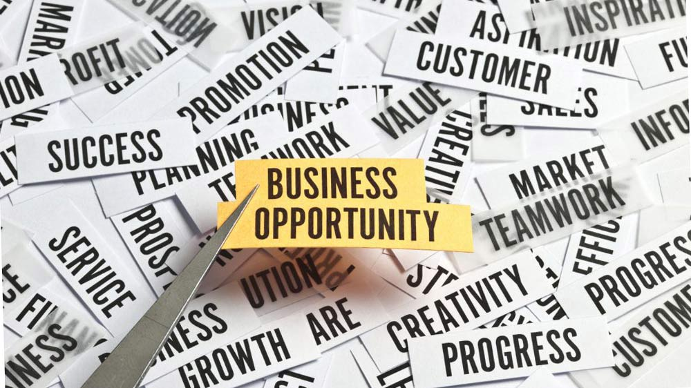 Best Business Opportunities In Vellore For Higher Profits