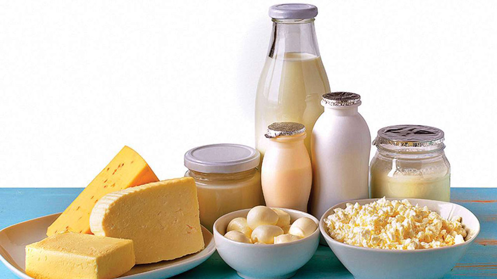 indian dairy industry