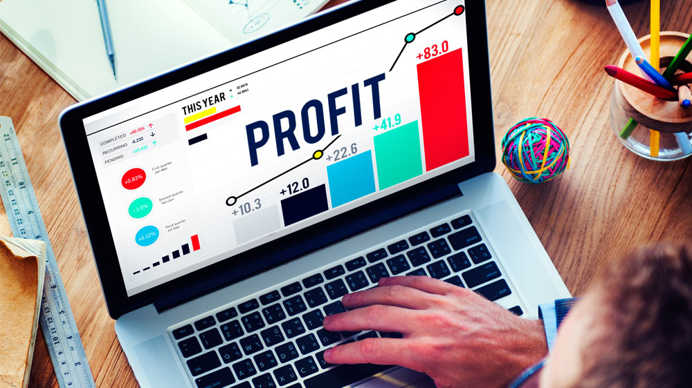 Availing profits from web portals