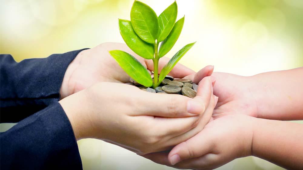 Explore External Funding Options