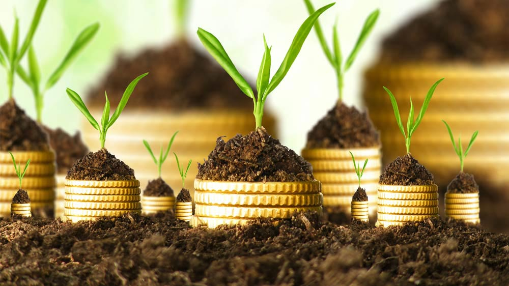 The-Rise-of-Micro-Entrepreneurship
