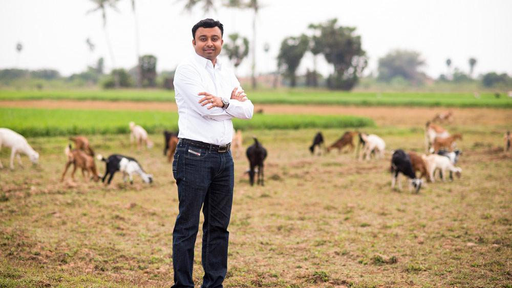 How online meat segment is catching up the market