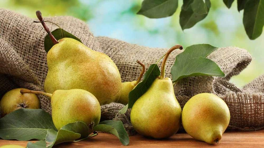 Belgian Conference Pears is a low calorie fruit: Tarun Arora