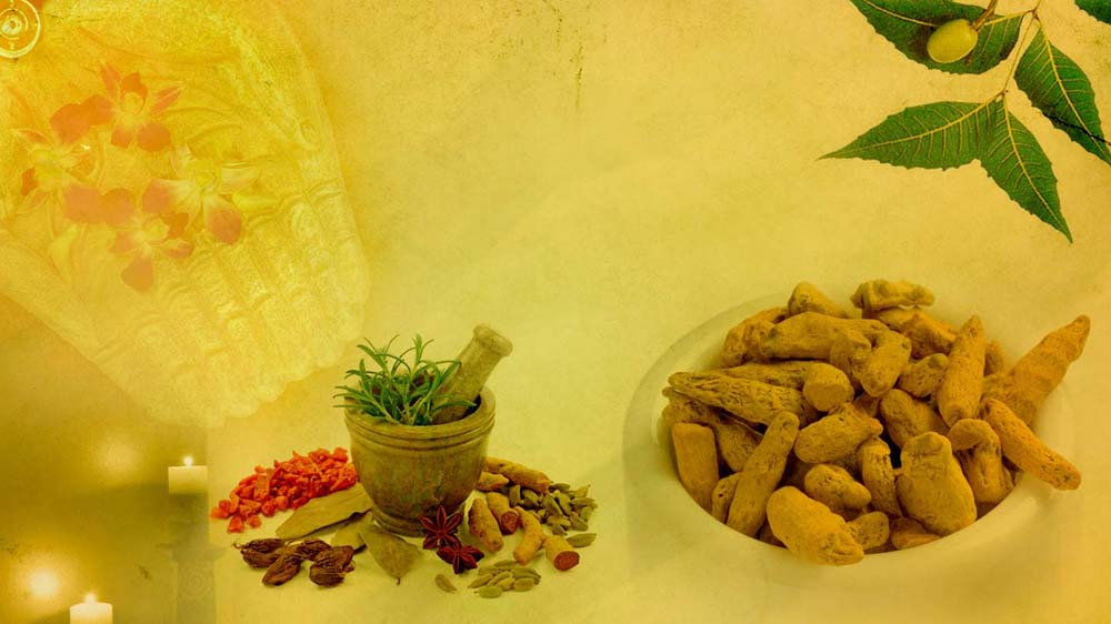 Ayurveda- Treating Chronic Diseases the Natural way