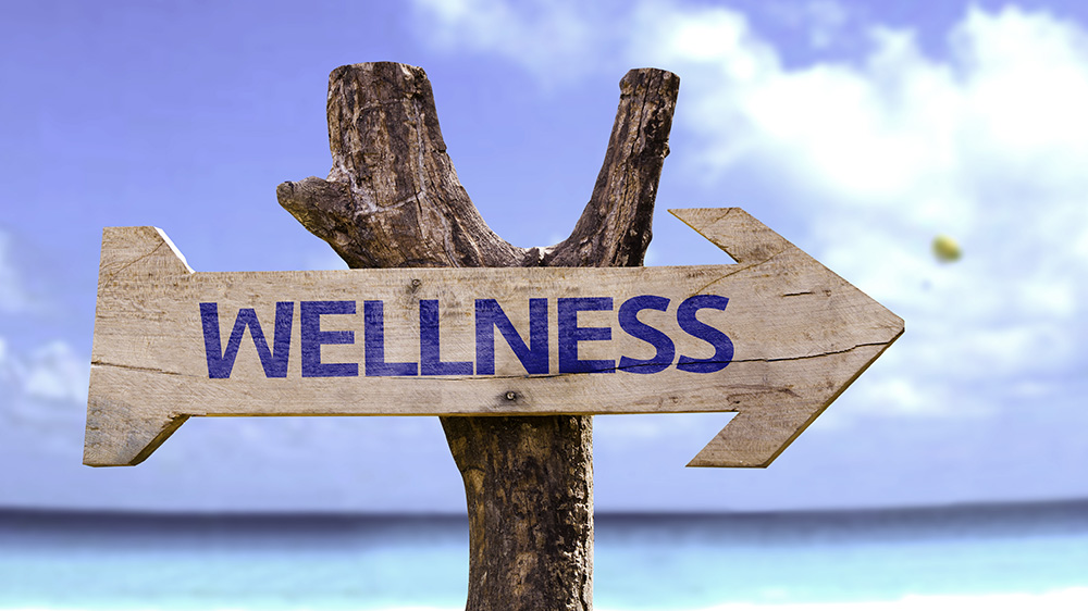 The Rising Trend In Wellness Industry