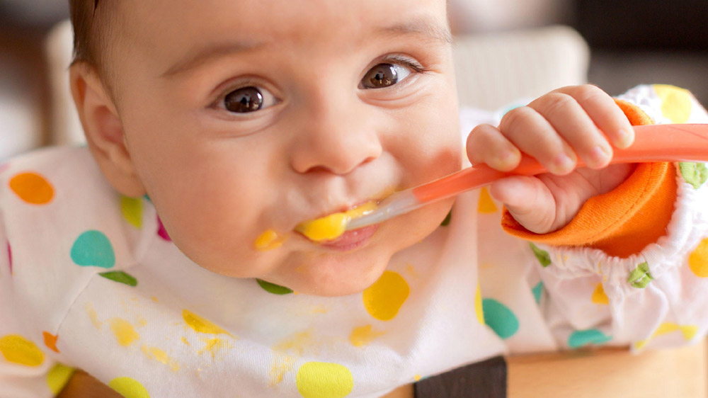 Tips On How To Start An Organic Baby Food Business