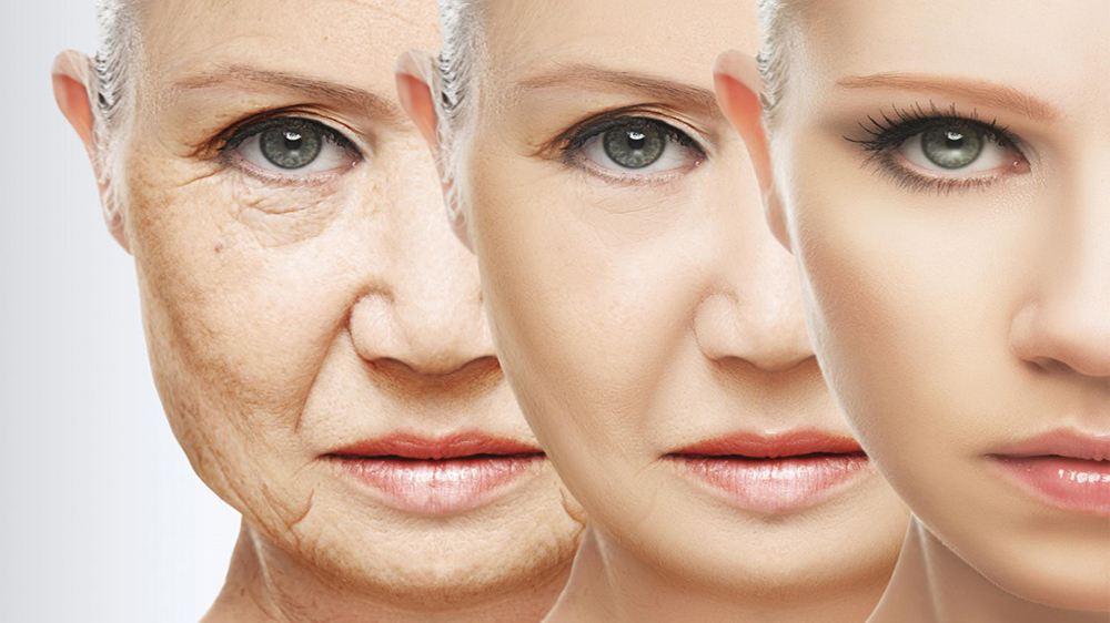 Anti-Aging: A Lucrative Business Opportunity