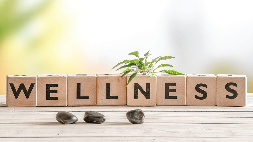 Ways To Create A Thriving Wellness Business