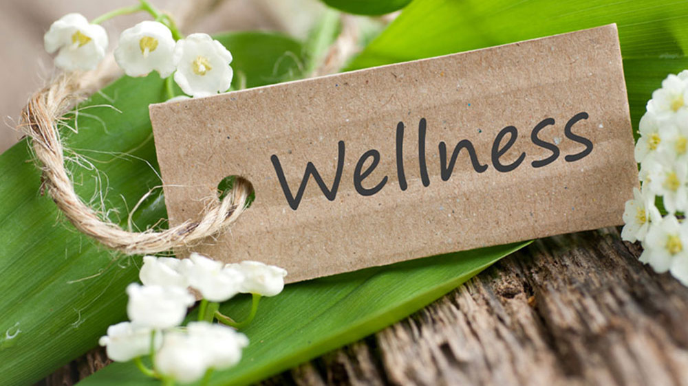 Why Wellness Business Opportunities Are Flourishing In Vellore