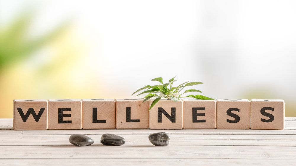 Constructive Home-Based Business Ideas For Holistic Wellness Franchisors
