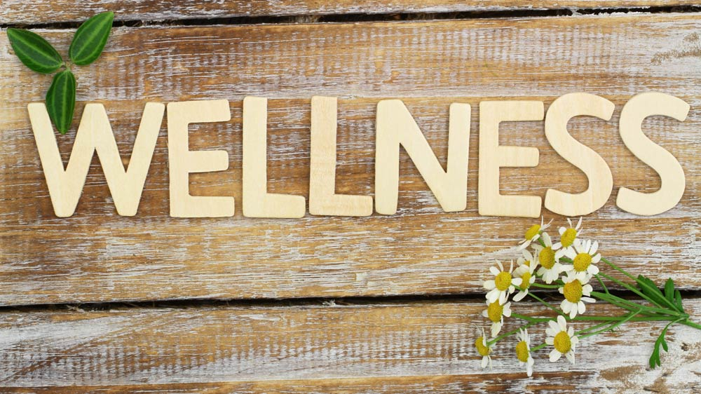 Why Opening A Holistic Wellness Business Could Be A Money Making Business Opportunity