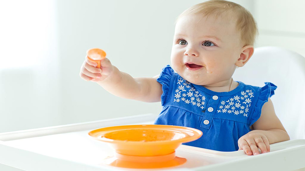 How to Start an Organic Baby Food Business in India