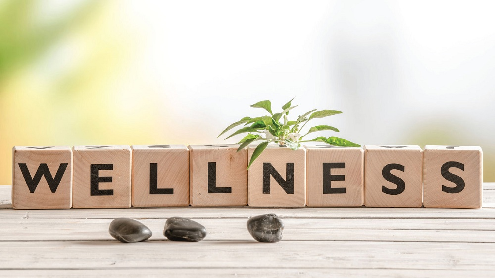 Here are the Sub-categories that Account for the Increasing Wellness Industry's Market Size