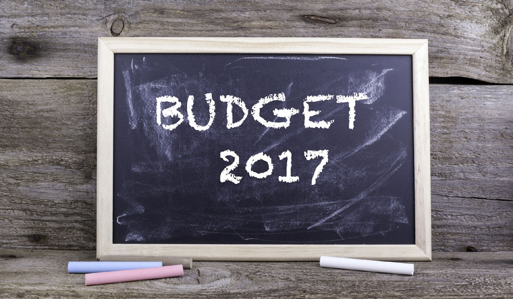 Budget-2017-proves-beneficial-for-the-wellness-industry