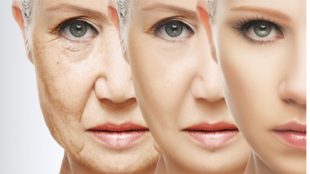 Coming of age – the anti aging Industry