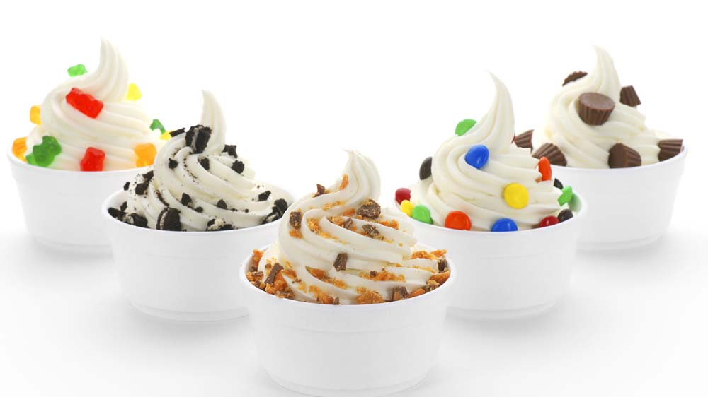 Frozen yogurt: A successful business idea