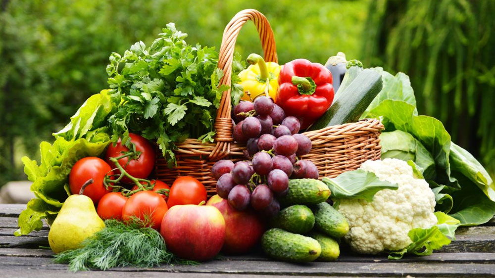Healthy lifestyle fuels demand for organic business