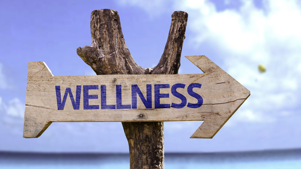 Wellness Industry in India