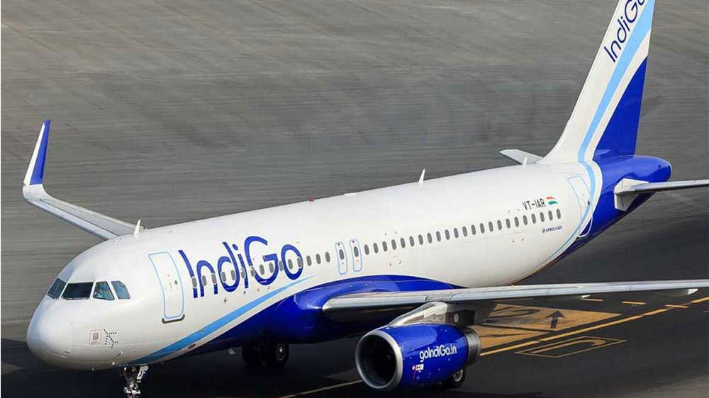 IndiGo to make major expansion into international markets: IndiGo's new CEO