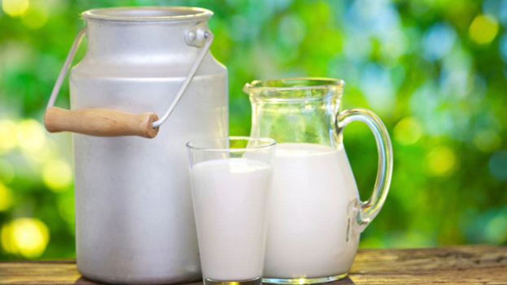 GEA to setup largest milk production facility in Gujarat