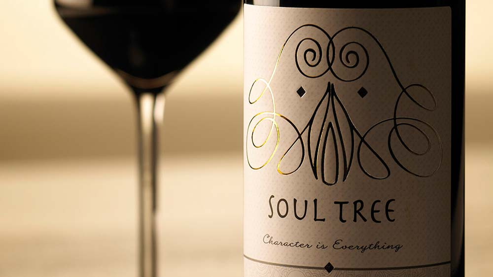 Soul Tree launches campaign to raise 350,000 pounds