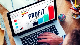 Availing profits from web portals