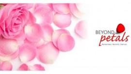 Beyond Petals to go beyond Mumbai