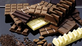 Chocolat Frey organises workshops for hospitality sector in India