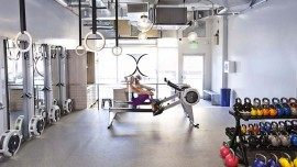 How are Boutique Gyms gaining popularity in the fitness ecosystem