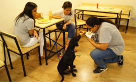 How this cafe is catching on CSR with a pet cafe