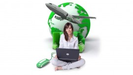 Fly high with franchise wings