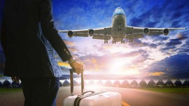 Flying High with Travel Franchise