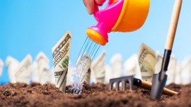 Generating Seasonal Profits Via Franchising