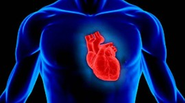GOQii to connect consumers to cardiovascular specialists