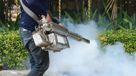 How to start your business in Pest Control